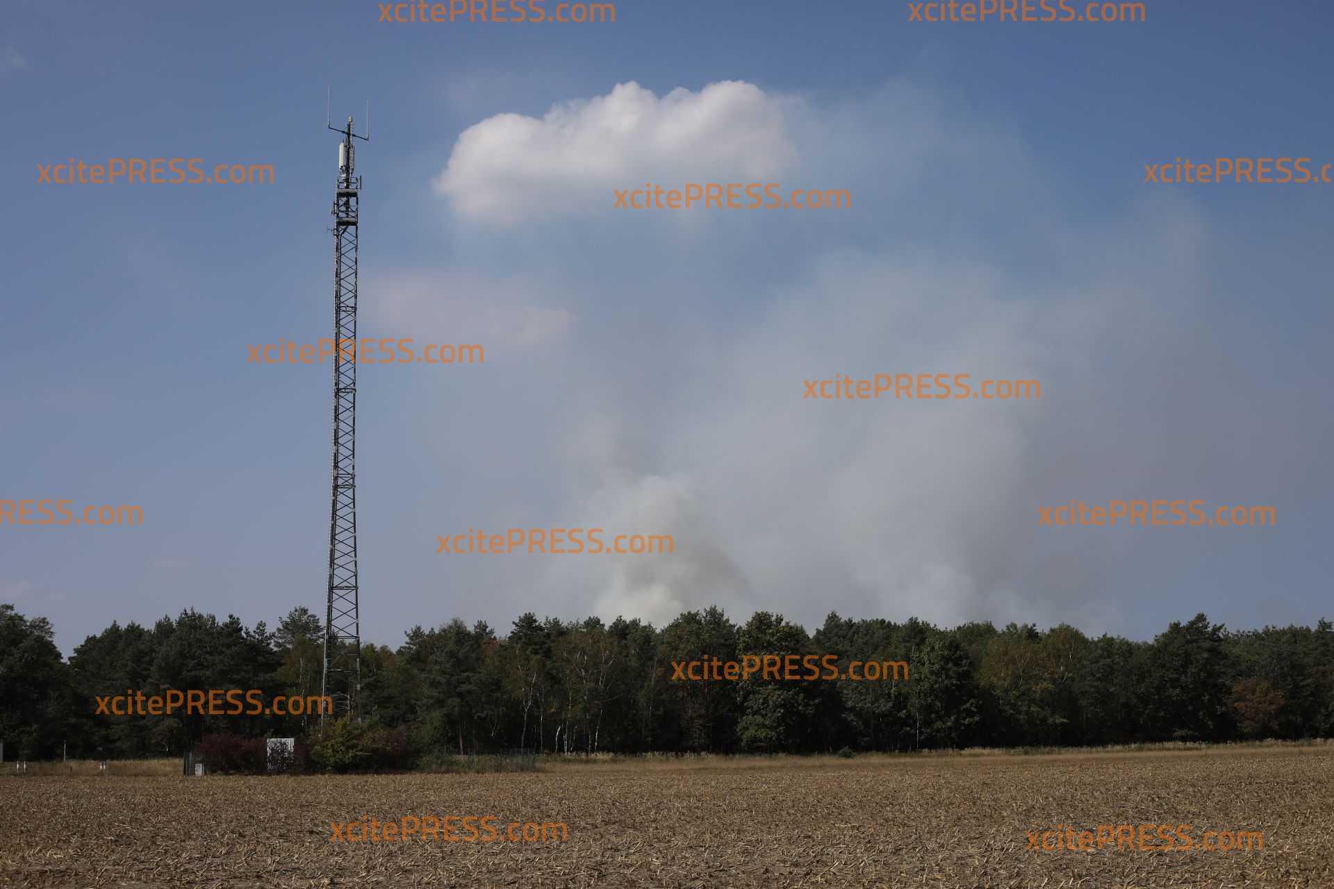 Heftiger Waldbrand bei Schwepnitz: Feuerwehr startet jetzt den Großeinsatz