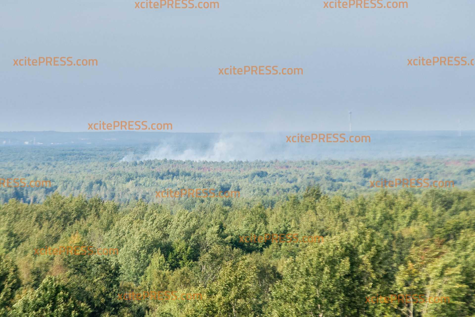 260 Hektar Waldbrand - Größter Waldbrand bei Schwepnitz erneut außer Kontrolle: Wind facht die Flammen immer wieder an