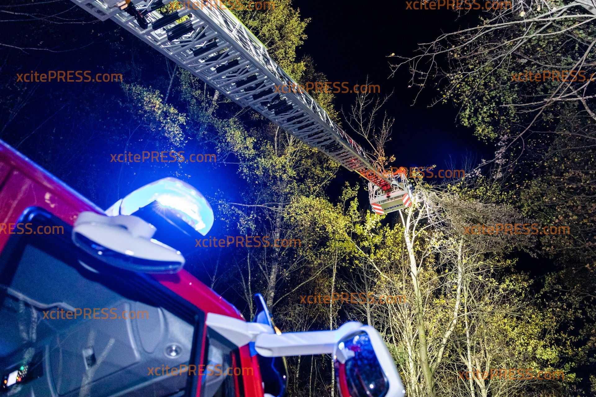 Kräftiger Herbstwind führt zu Feuerwehreinsatz: Teil von Baumkrone bricht ab und droht auf die Straße zu fallen