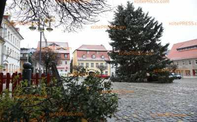 Mit schöner Weihnachtspracht nichts zu tun: Hat Pulsnitz den hässlichsten Weihnachtsbaum?!: Bürgermeisterin und Einwohner sehen die Sache positiv