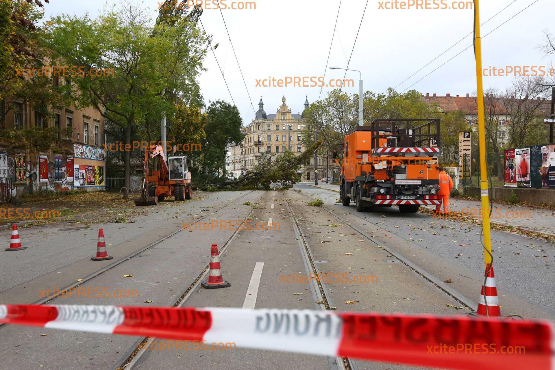 Unzählige Einsätze für die Feuerwehr: Sturmschäden auch in Landeshauptstadt