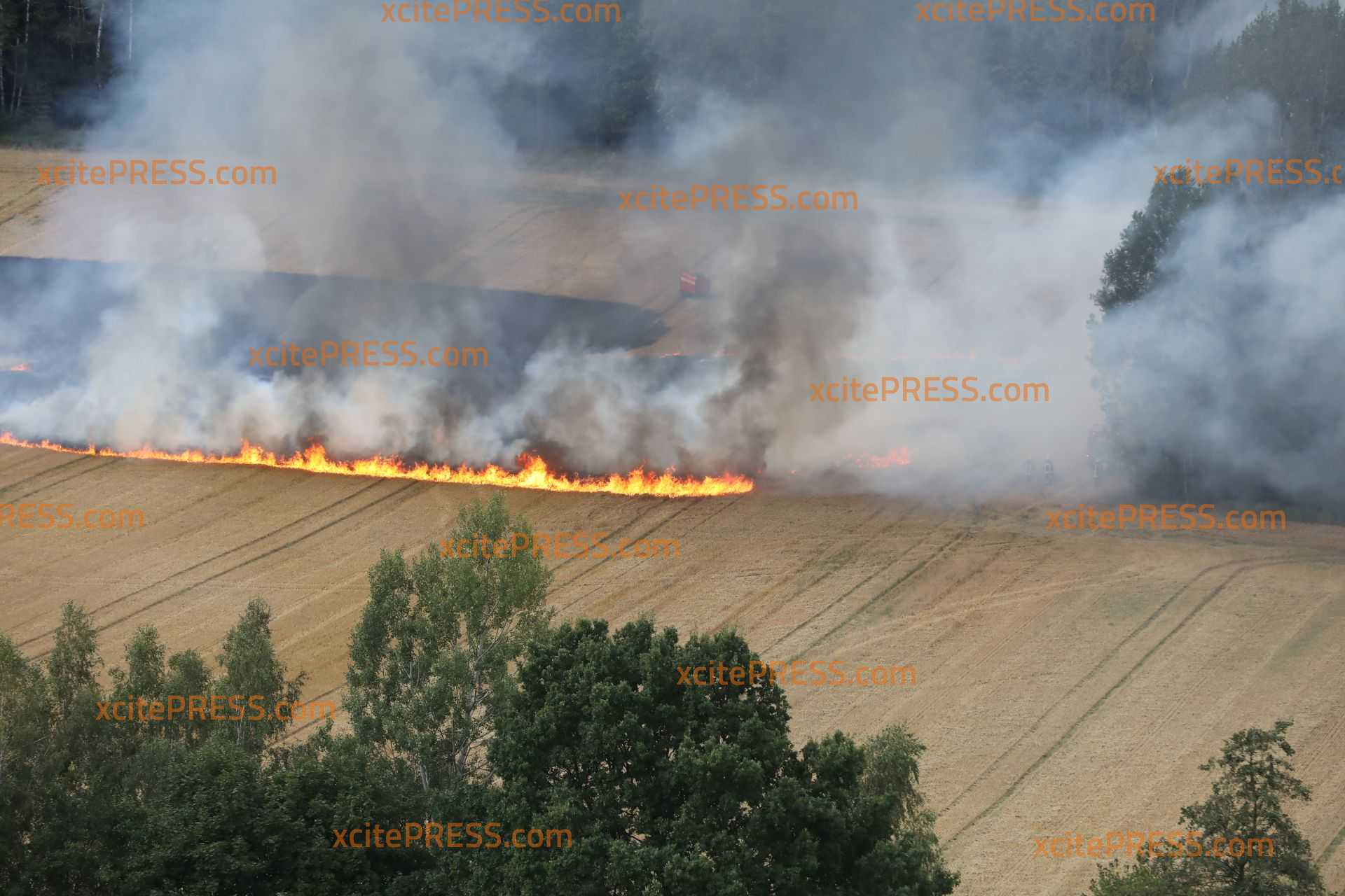 Schon wieder brennt ein Feld bei Bautzen: Feuerwehr verhindert Übergreifen auf Wald