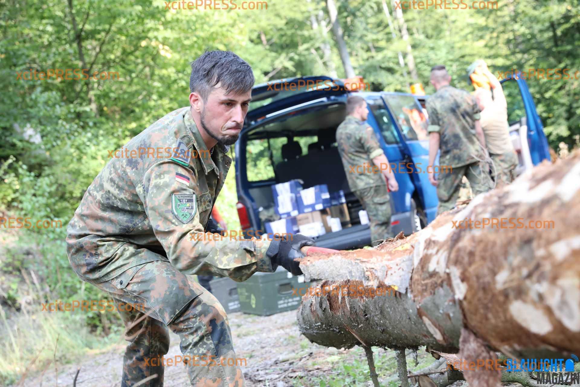 Bundeswehr gegen Borkenkäfer: Soldaten sollen bei Bekämpfung unterstützen: Sachsens Umweltminister Thomas Schmidt macht sich Bild von Einsatz
