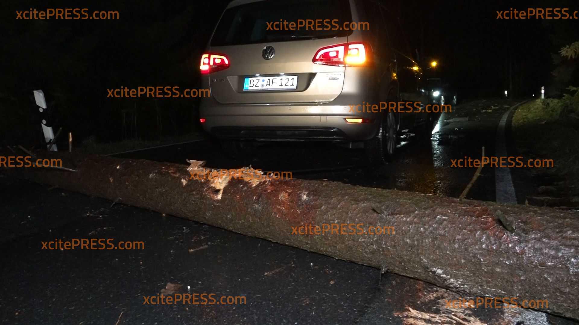 Sturm Yulia: Heftige Böen sorgen zuletzt in Sachsen für etliche Schäden: Auto schießt gegen umgestürzten Baum - Feuerwehrmann konnte nicht ausweichen