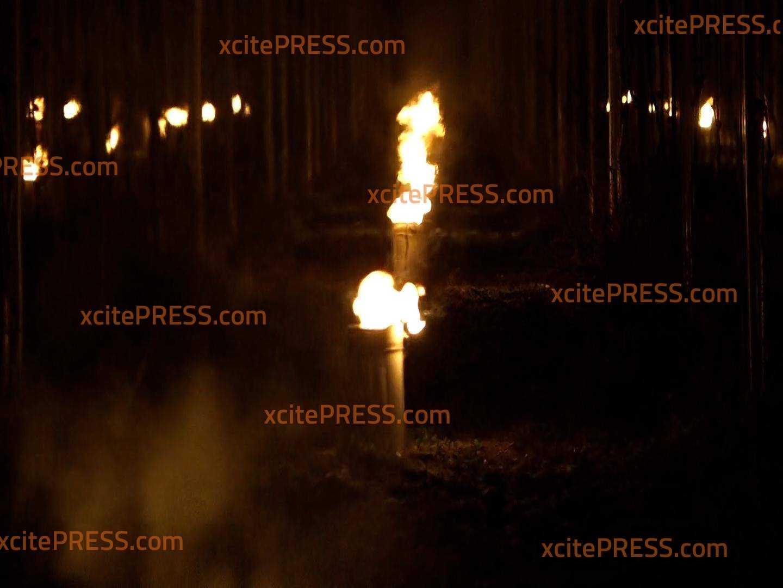Frostnächte im Weinberg: Kleine Feuer sollen Reben schützen : Etwa 180 kontrollierte Weinbergsfeuer am frühen Morgen entzündet